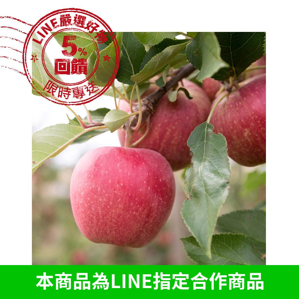 [甜露露]智利富士蘋果3XL 8入禮盒(多顆裝優惠)