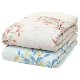 メキシコ綿入り 肌掛け布団 【ひより ベージュ1枚】 シングル 日本製 綿100% 〔ベッドルーム 寝室〕