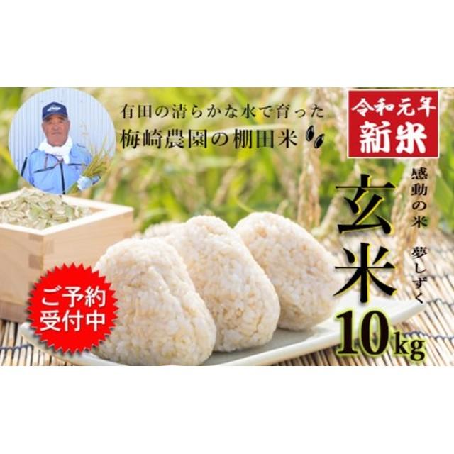 令和元年産 有田の清らかな水で育った棚田米『玄米』10kg