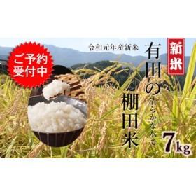 令和元年産 有田の清らかな水で育った棚田米【白米7kg】