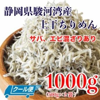 上干 ちりめん 煮干し (サバ、エビ混ざりあり) 1kg(500g×2袋) 静岡県駿河湾産