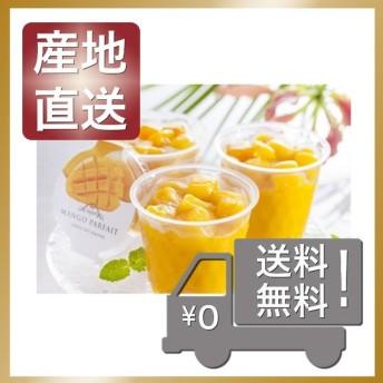 内祝 お返し 出産祝 結婚内祝 アイス ソフトクリーム 芦屋シェフ・アサヤマ 洋菓子工房 芦屋マンゴーパフェ