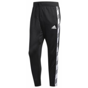 (アディダス) adidas Pro Accelerate Pants メンズ ズボン  (取寄)