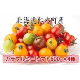 <仁木ファーム>カラフルミニトマト4種セット約2kg