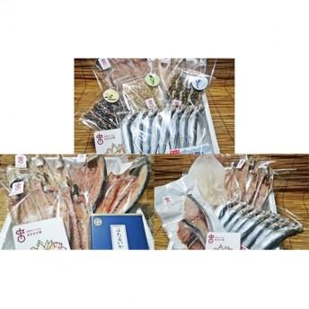 年間3回定期便!職人手作り地魚一夜干と季節の味(氷見ぶり、ホタルイカ、味醂干)