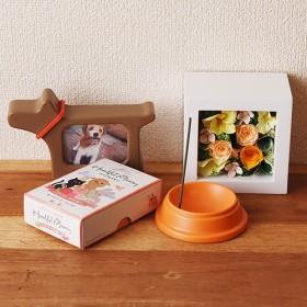 【日比谷花壇】【ペットのお供え用】犬のためのお供えセット