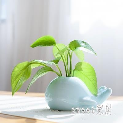 創意鯨魚大象青瓷小花瓶 家居水培陶瓷擺件 茶道花插時尚個性花器 XN1016【Sweet家居】