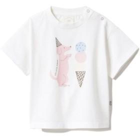 ジェラートピケ アイスクリームアニマルワンポイント baby Tシャツ レディース OWHT 70 【gelato pique】