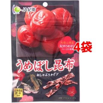 モントワール JA紀南 うめぼし昆布 (12g4袋セット)