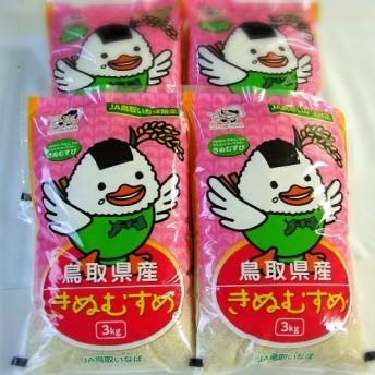 鳥取県産きぬむすめ(12kg)