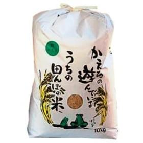 【令和元年産新米】農薬、化学肥料を極限まで減らした、ひなた村のお米 さがびより玄米10kg