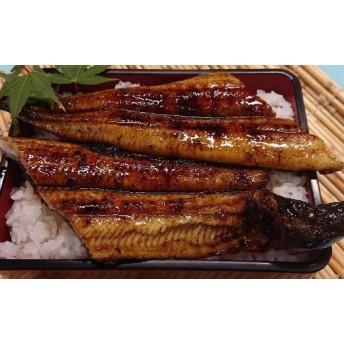初音の高知県産うなぎ蒲焼きと白焼きセット(鰻セット)