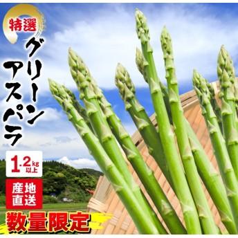 グリーンアスパラ(計1.2kg以上)宮崎県都農町産