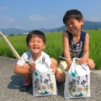 【令和元年産新米】農薬、化学肥料を極限まで減らした、ひなた村のお米 さがびより玄米5kg×2袋