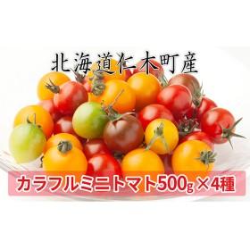 <仁木ファーム>カラフルミニトマト4種セット約2kg(4種セット)