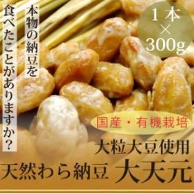 本物の天然わら納豆 大天元300g×1本 大粒納豆 栃木県産・有機大豆使用 放射性物質検査済 なっとう
