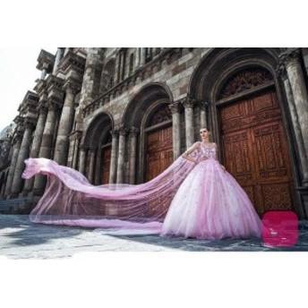 ウェディングドレス ピンクボールガウンアプライクロングベールチュールVネックレースのウェディングドレスブライダルドレス