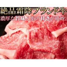 天然生活 【九州産】黒毛和牛A4・A5等級【無選別】切り落とし500g