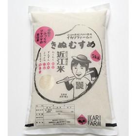 【30年産】中粒でふっくらツヤツヤの美白米「きぬむすめ」白米5kg
