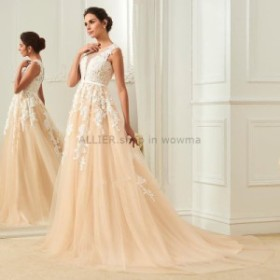 ウェディングドレス ヴィンテージイリュージョンネックラインアップリケシャンパンウェディングドレスブライダルドレス