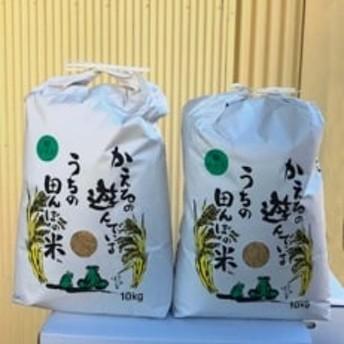 【令和元年産新米】農薬、化学肥料を極限まで減らした、ひなた村のお米 さがびより玄米10kg×2袋