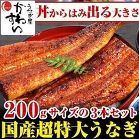 国産うなぎ 超特大サイズ 蒲焼き 200g 3本セット