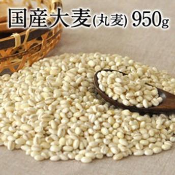 国産大麦 (丸麦) 大麦β-グルカンなど食物繊維が豊富 丸麦(国産)たっぷり950g 送料無料 今話題の食物繊維ベータグルカンも含有3 7営業日以内に出荷(土日祝除く)