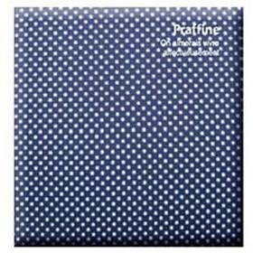 ナカバヤシ Digioデジタルフリーアルバムプラフィーネ(デミサイズ/ブルー) ア-DP-144-B