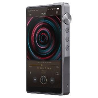 アイバッソ・オーディオ デジタルオーディオプレーヤー iBasso Audio DX220 【返品種別A】
