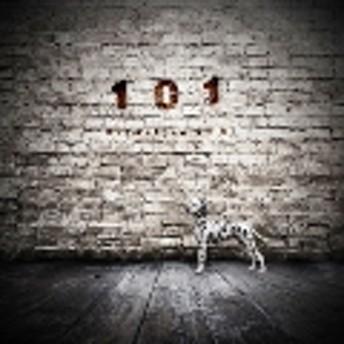 101 CD