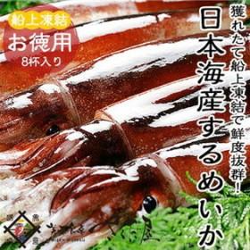 【8ハイ(2kg)】【BBQ】日本海するめいか お徳用獲れたて船上凍結