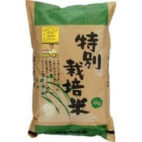 平成30年度産 北海道特別栽培米 芦別ななつぼし (5kg)