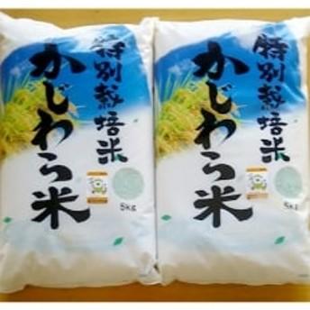 【令和元年産】精米 かじわら米(白米10kg)