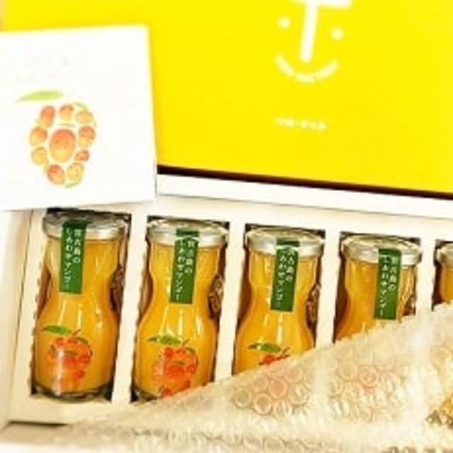 宮古島のしあわせマンゴー 小瓶5本ギフト