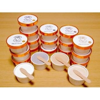 さるふつ牛乳アイスクリーム バラエティ20個セット【03004】