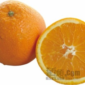 【酒 ドリンク 】生鮮 オレンジ(44玉入り)(2482)