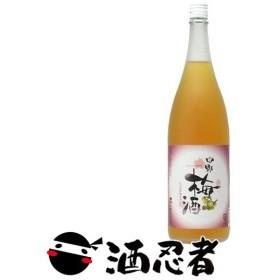 中野BC 中野梅酒 14度 1800ml