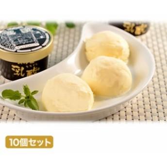 乳蔵 プレミアム バニラ 10個セット アイス
