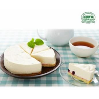 山田牧場 芳醇 レアチーズ ケーキ 5号 YD-R30 チーズケーキ 洋菓子