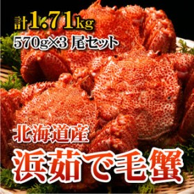 【3尾セット 計1.71kg】北海道産浜茹で毛蟹 1尾あたり570g
