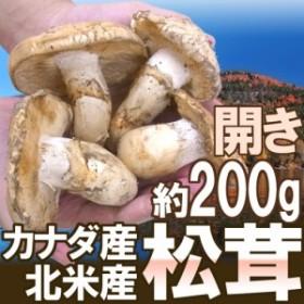 """【送料無料】カナダ・北米産 """"松茸"""" 開き 2~6本 約200g【予約 入荷次第発送】"""