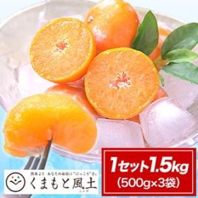 【1セット1.5kg(500g×3袋)】熊本県産小玉みかん使用 冷凍皮付き小玉みかん