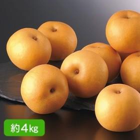 福島県/須賀川 渡辺さんの梨(幸水)約4kg 13004354