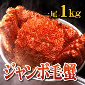 【1kg】ジャンボ毛蟹 一尾