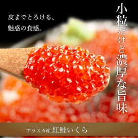 【500g】天然紅鮭いくら