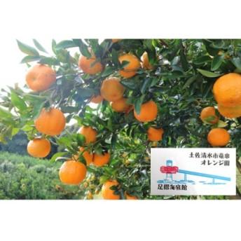 オレンジ園のぽんかん【5㎏】