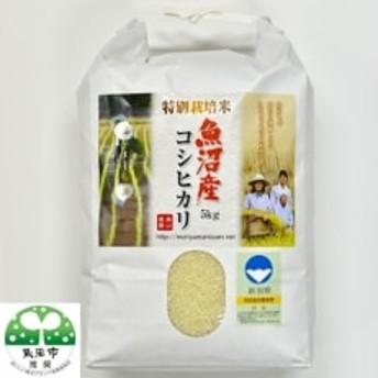 【令和元年産 新米先行受付】森山農園特別栽培米魚沼産コシヒカリ(新潟県認証)5kg