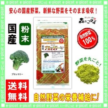 【送料無料】 国産 ブロッコリー 【粉末】 100g やさい パウダー 100% 野菜 YSD ぶろっこりー