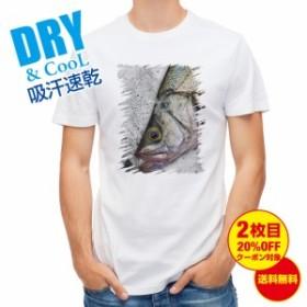 Tシャツ ヒラスズキの目 釣り 魚 ルアー 送料無料 メンズ ロゴ 文字 春 夏 秋 インナー 大きいサイズ 洗濯