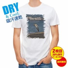 Tシャツ アオサギ 釣り 魚 ルアー 送料無料 メンズ 文字 春 夏 秋 インナー 大きいサイズ 洗濯